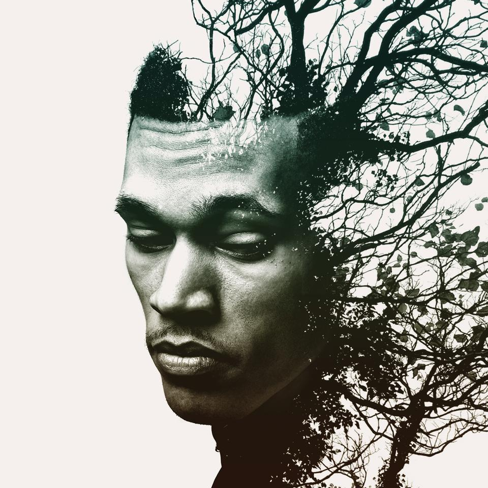 Trip Lee's New Album