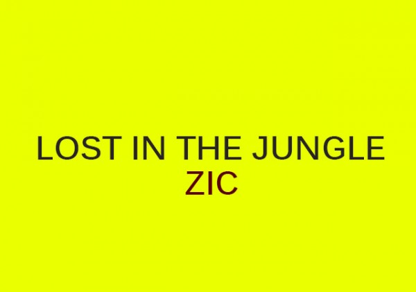 zic-lost-in-the-jungle