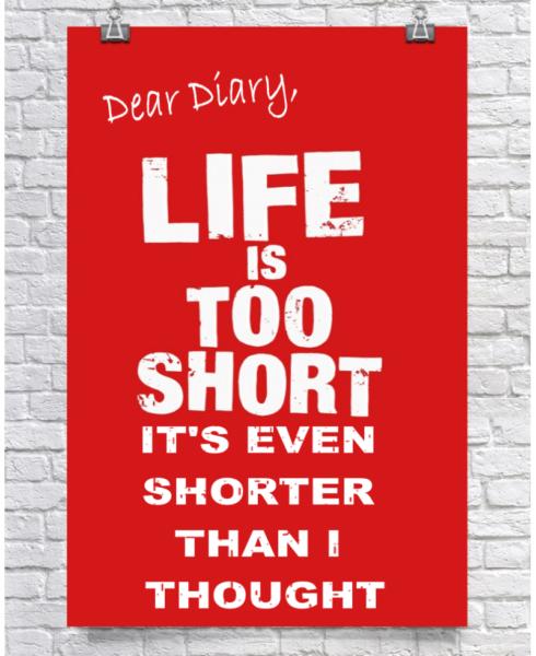 Dear Diary 4