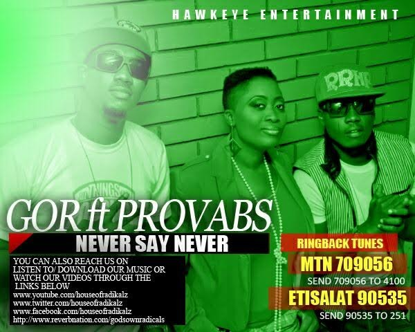 gor-never-say-never-provabs
