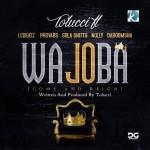 VIDEO: TOLUccI – Wajoba Ft LC Beatz, Probavs, Sola Shittu, Nolly & DaBoomsha